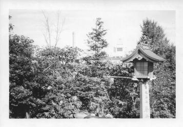 Diet Building, Tokyo, Fall, 1953