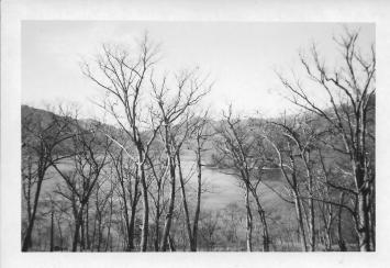 View from Don's window at Nikko, Japan, November, 1953